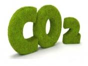 2021建材行业对碳减排、碳中和落实措施的研